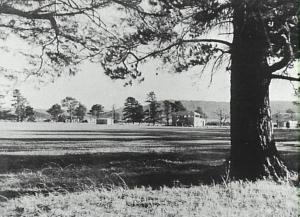 Reed Park in the 1950s. Photo taken from about where our caravan would have been located.